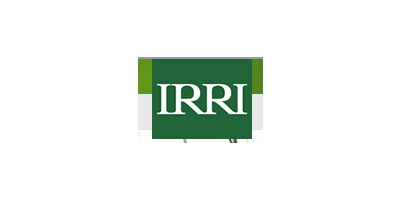 IRRI - International Rice Research Institute