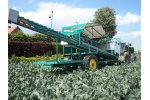 Baekelandt - Model 2015 - Cauliflower Harvester