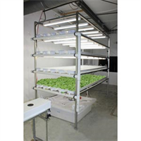 Model GT50 - Vertical Lettuce and Herb System