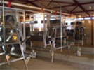 Gantry Feeding Systems For Layer Cages