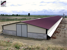 Sperotto - Free Range Poultry House