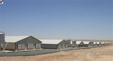 Sperotto - Floor Breeding Poultry House