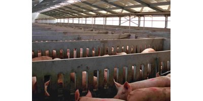Pigs Housing & Sheds