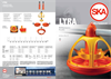 Model LYRA - Multipurpose Auger Feeder Brochure