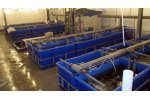 Water Recirculation Systems for Fish Production