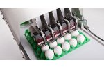 Model Jet BAN5 - Egg Printing Systems