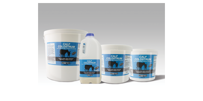 Calf Colostrum