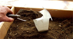 Soil Analysis Services