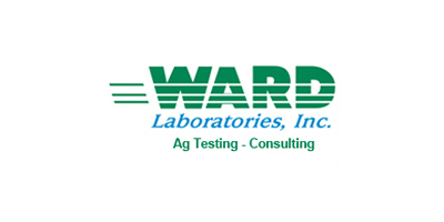 Ward Rapid Testing Services