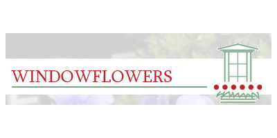 Windowflowers Ltd