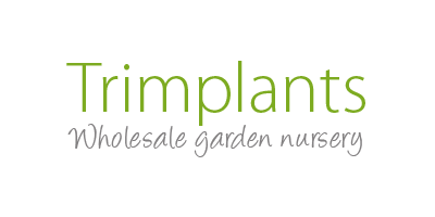 Trimplants Nursery