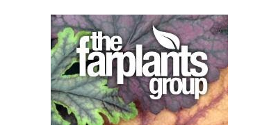 Farplants Group