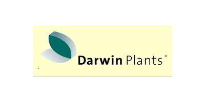 Darwin Plants / Witteman & Co. B.V.