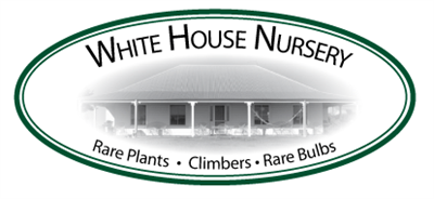 White House Nursery