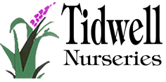 Tidwell Nurseries, Inc.