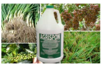 Agrispon - Plant and Mineral Extracts