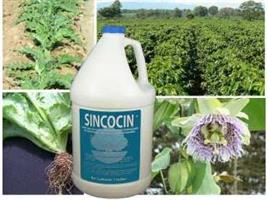 Sincocin - Liquid Concentrate for Suppression of Nematodes and Associated Pathogens