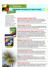Vital - Model 12-4-12 - Palm Food Granular Fertilizers Brochure