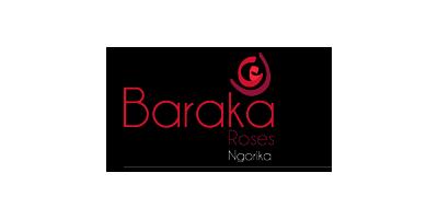 Baraka Roses