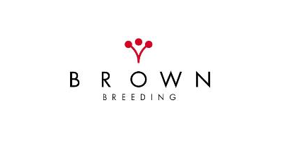 Brown Breeding