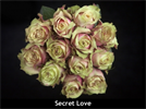 Model 63009 - Assortment - Secret Love