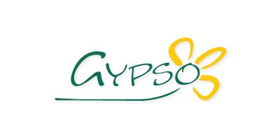 Gypso Flowers