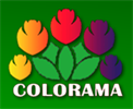 Colorama Wholesale Nursery