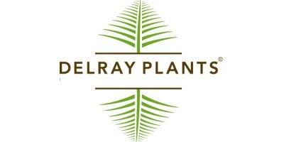 Delray Plants Company