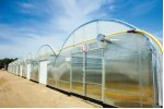 Expansion Mansion Economical Commercial Greenhouse