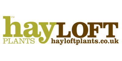 Hayloft Plants