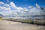 Commercial Growers Greenhouse Structures