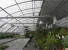 Outdoor Sunlight Greenhouse