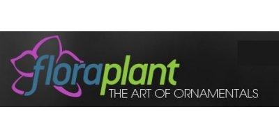 Flora Plant