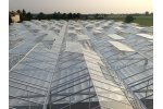 Venlo - Alternating Vents Venlo Greenhouse