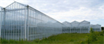 Venlo Glasshouse Structures