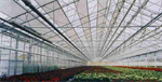 Wide Span Glasshouse Structures