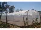 Model WL8132 - Economical Tunnel Greenhouse