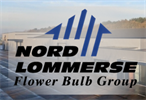 Nord Lommerse Flower Bulb Group