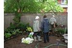 Community Planting Services