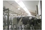 Ventilation and Exhaust Systems for Cubicle Barns