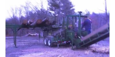 Woodbine - Model Pro 20 - Firewood Processor