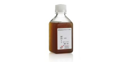 Fetal Calf Serum
