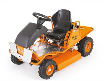 Rider - Model AS 799 - Ride-on Mowers
