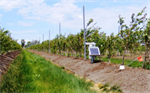 Real-Time Soil Moisture Monitoring Services