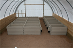 Indoor Calf Pens