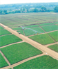 T-L - Linear Irrigation Systems