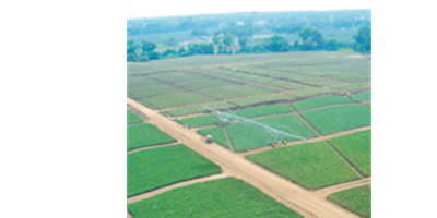 T-L Irrigation - Linear Irrigation Systems