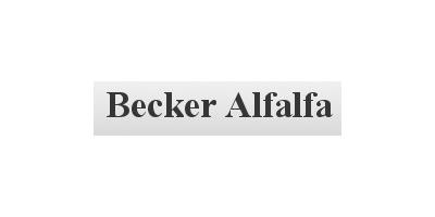 Becker Alfalfa