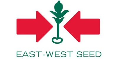 EWS Group - East-West Seed