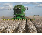 NCC Survey Suggests U.S. Producers to Plant 11.0 Million Acres of Cotton in 2017